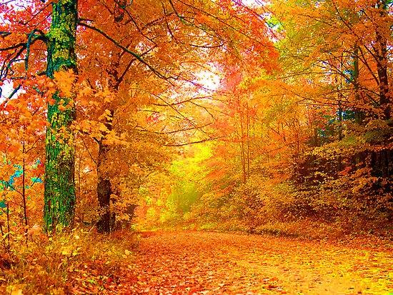 Прекрасна есен