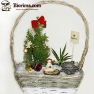Онлайн магазин за приказни градини Biorima.com - Градинарство