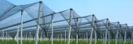 Мрежи за селското стопанство - Градинарство