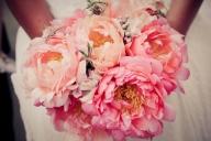 ОТ ФЛОРИСТИТЕ – ЗА ЦВЕТЯТА С ЛЮБОВ. БОЖУРИТЕ! - Още от древността, божурите са считани за цветя на любовта, вярността и нежноста. Може би, точно поради тази причина божурите са едни от най-предпочитаните цветя за сватбения декор. Латинското си название paeonia според някои сведения цветето е получило от тракийската местност Пеония, където в изобилие растели божури в диво състояние. - СВАТБЕНИ УСЛУГИ