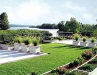 Покривното озеленяване – лукс или необходимост в града? - Градинарство