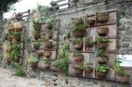 В ландшафтната архитектура, зелената стена се описва като онази част от сградата, която е свободно стояща. Често е покрита с растителност – частично или напълно, която се култивира и поддържа в неорганична среда или почвен субстрат.  - Градинарство
